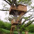 La cabane au début du printemps 2008 21.04.08 (1).JPG