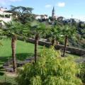 gardens 2.jpg
