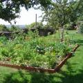 jardin et serre 028 (Copier).jpg