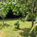 jardin1004.JPG