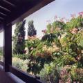 lauphanie balcon - Copie.jpg